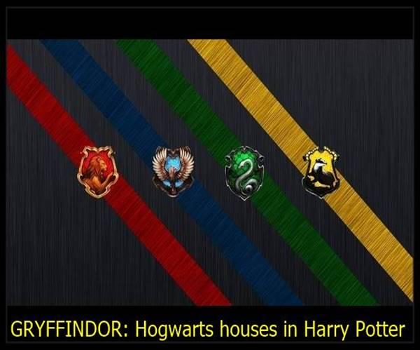 Hogwarts houses in Harry Potter
