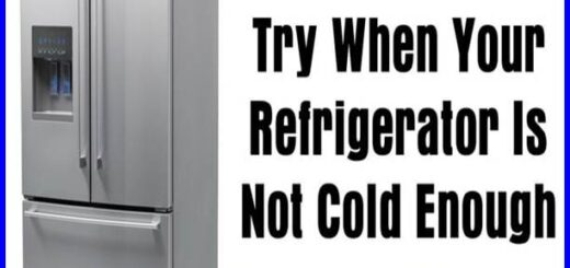 freezer not freezing but the fridge