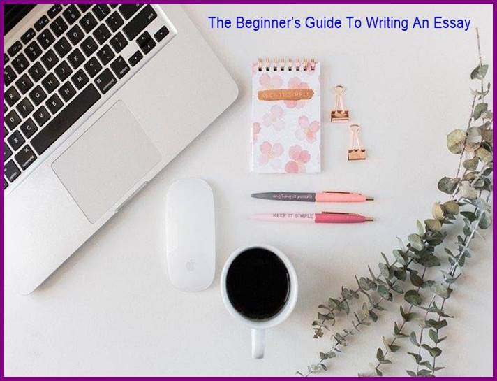 The Beginner's Guide To Writing An Essay