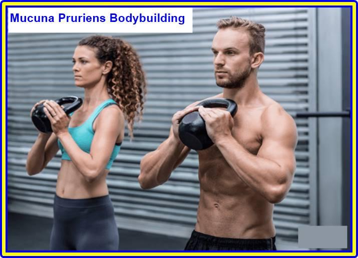 Mucuna Pruriens Bodybuilding