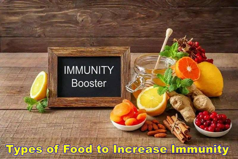 Types of Food to Increase Immunity